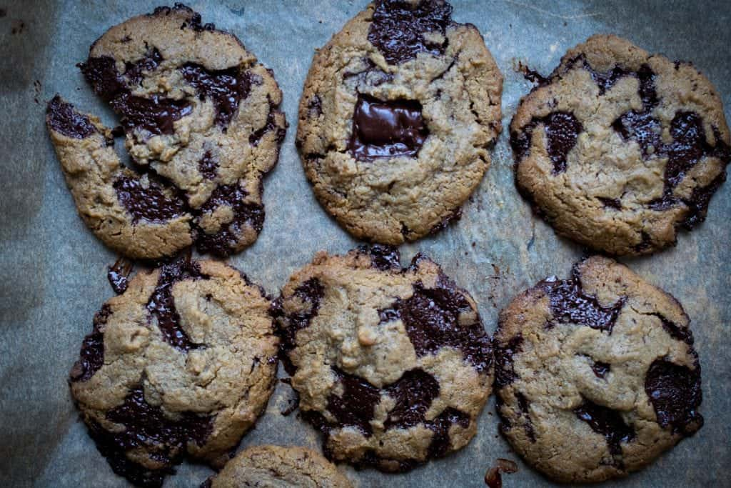 keto low carb chocolate chip cookie