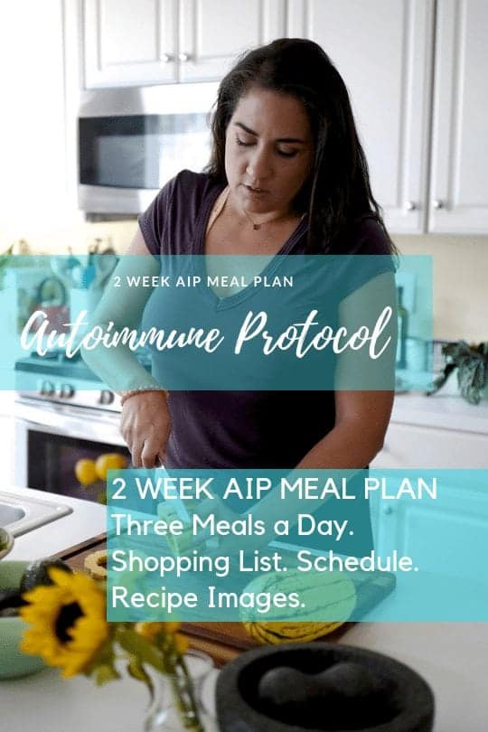 aip meal plan