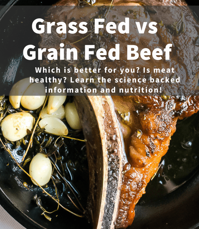 is grass fed beef better