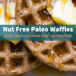 nut free paleo waffle